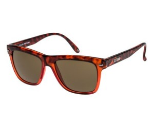 lunettes-roxy-homme-1